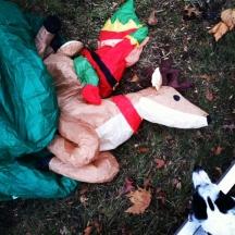reindeer wreck